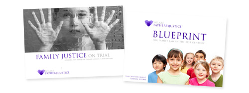 Blueprint & Family Justice on Trial eBook
